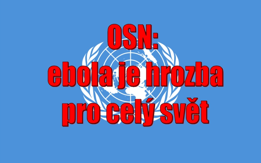 Rada bezpečnosti OSN: epidemie eboly v Africe je &quote;hrozbou pro mezinárodní mír a bezpečnost&quote;