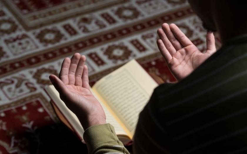 Zakažte muslimskou víru, je to nemoc! vyzývá australská politička