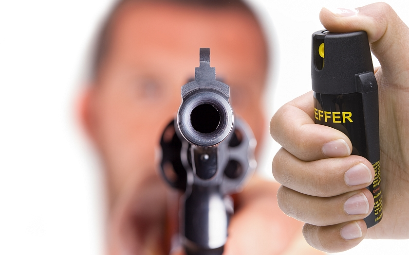 Rakušani se ve velkém ozbrojují, tržby prodejců střelných zbraní se zvýšily o 350 procent.