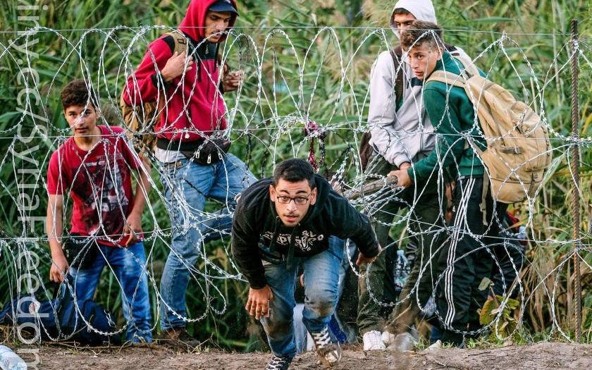 Maďarsko si najímá na státní hranice &quote;lovce uprchlíků&quote;