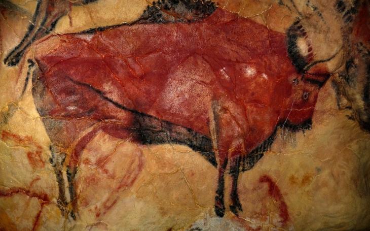 Jídelníček neandrtálce byl různorodý, jedl nosorožce i houby