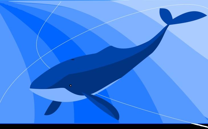 Policie varuje před hrou Modrá velryba, navádí k sebevraždám