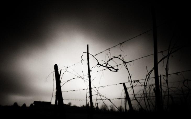 Bití, znásilňování a masakrování nenarozených dětí. Bývalá dozorkyně koncentračního tábora v KLDR popisuje každodenní hrůzy