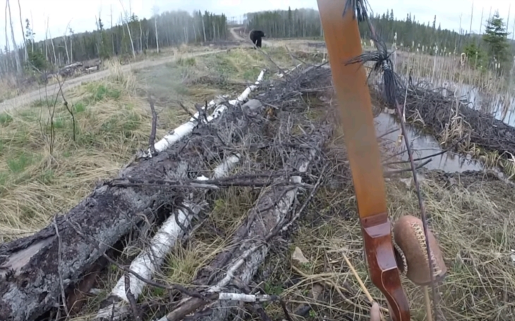(VIDEO) Neférový súboj: muž vs. medveď