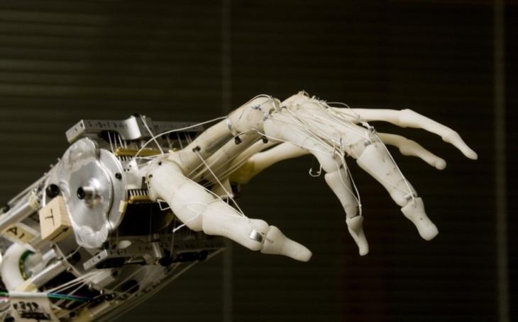 VIDEO: Potřebujete ještě jedny ruce? Ty robotické vám pomohou skoro se vším