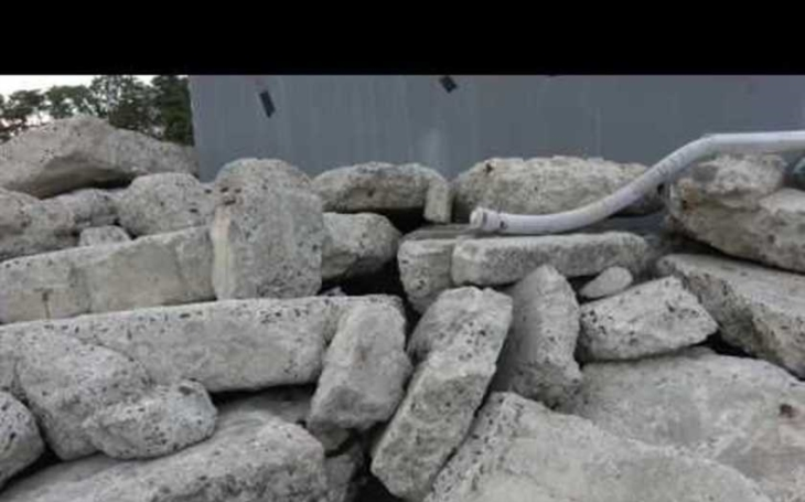 Robotický had zachraňuje životy. Umí šplhat i po zdech