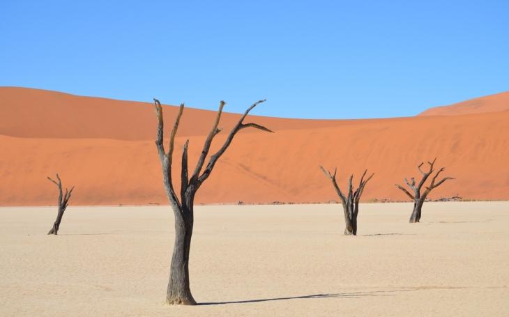 Těžba písku zabíjí řeky a v konečném důsledku i lidi