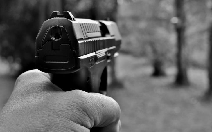Senát neschválil právo nosit zbraň pro zajištění bezpečnosti ČR