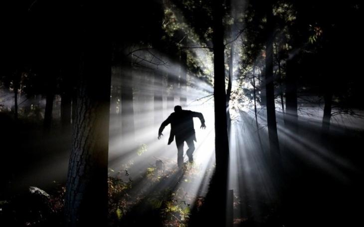 Důležitá osobní ochrana: Jak se bránit před psychopaty, predátory a hady v oblecích?