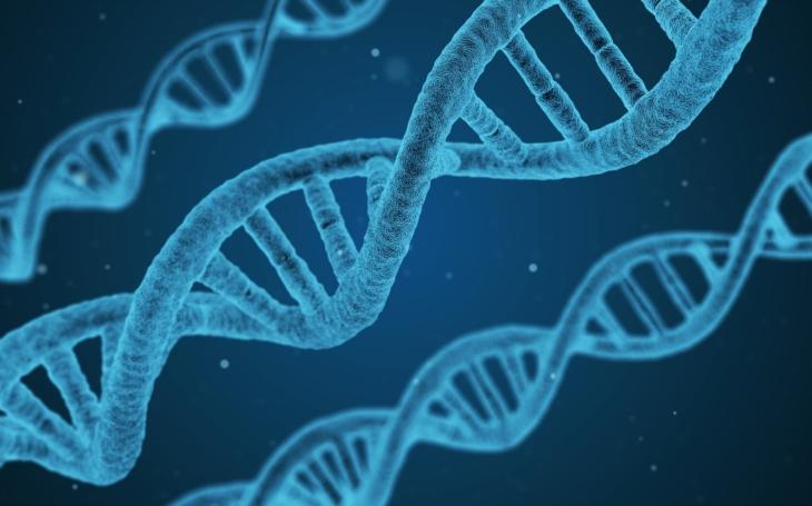 Co prozradila DNA: Původní obyvatel Británie měl černou pleť a modré oči