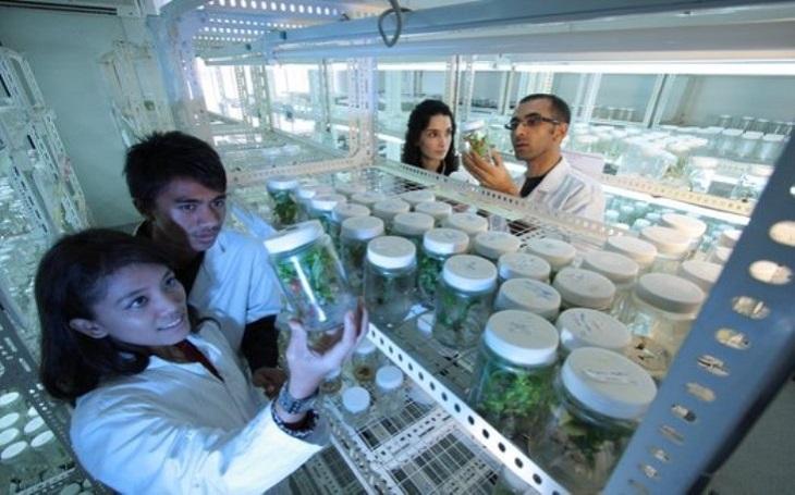Accenture rozšiřuje platformu pro vývoj a výzkum léků a vytváří partnerský ekosystém zaměřený na přírodní vědy