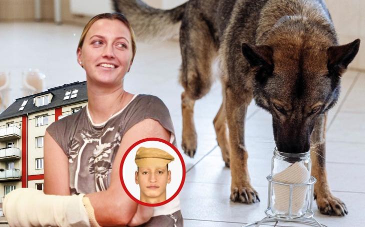 Případ pořezané tenistky Petry Kvitové (II.díl) : Vybere si policie pod mediálním tlakem pachatele a pak mu ušije důkazy na míru?