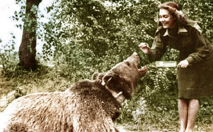 Usměvavý válečník - medvěd Wojtek v polské armádě proti Hitlerovi