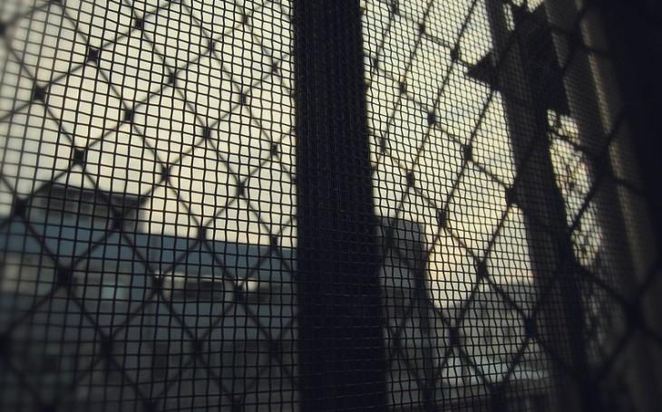 Přibývá firem ochotných zaměstnávat vězně. Ovlivní to koronavirus?
