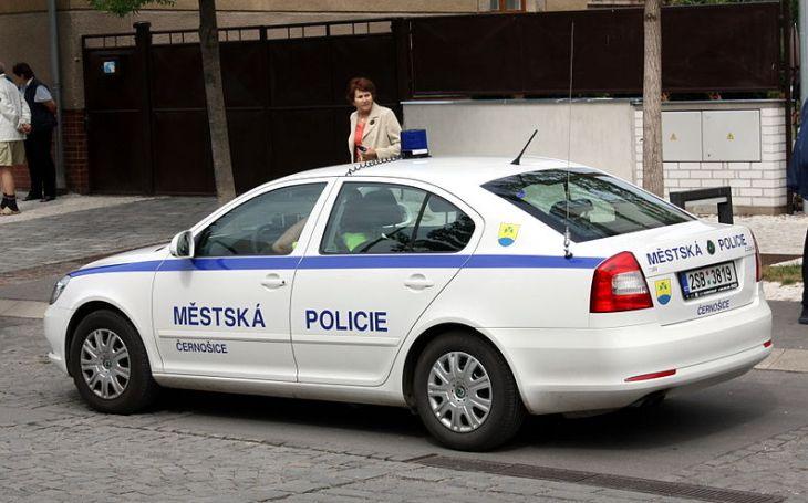 Jsou lidé, kteří si pletou demokracii s anarchií. Na policajty nadávají jen do doby, kdy jim teče do bot (komentář Lumíra Němce)
