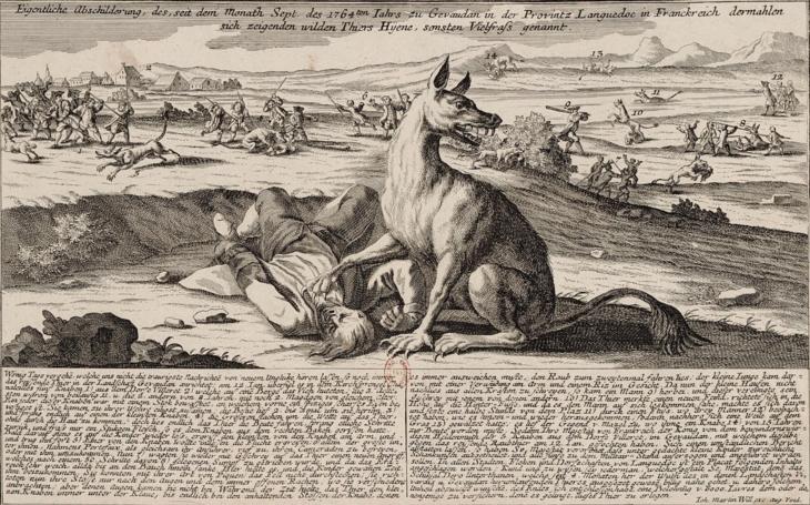 Kdo byla Bestie z Gévaudanu? Na jejím kontě zůstalo více než 100 mrtvých
