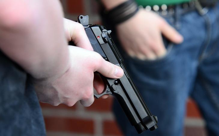 Právo bránit sebe i jiné se zbraní v ruce bude ústavně zakotveno